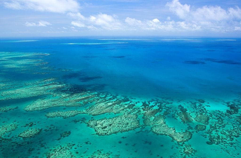 Diminishing reef