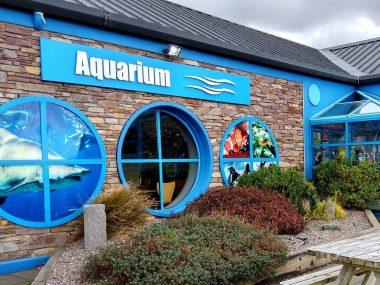 Oceanworld Aquarium in Dingle Bay IRELAND