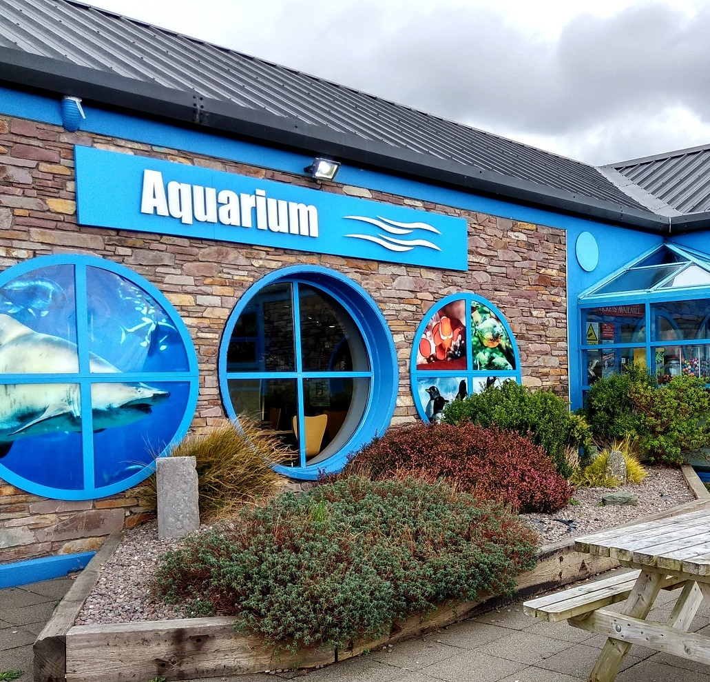 A Rainy Day at the Dingle Oceanworld Aquarium, Ireland