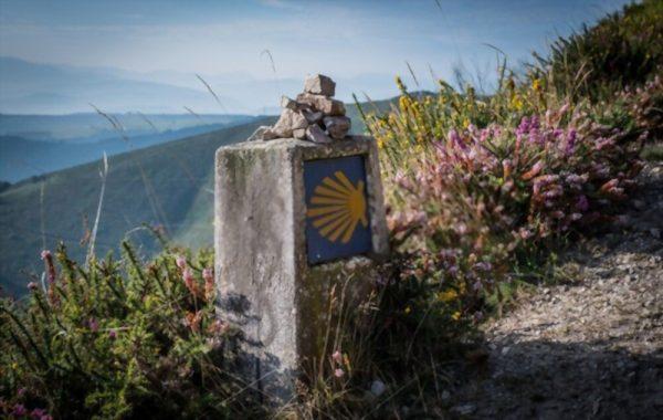 El Camino de Santiago Signage